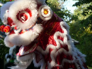 Lion Dragon dance at the Hakone Gardens wedding below